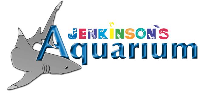 Jenkinsons_Aquarium_4634792